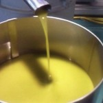 オリーヴの収穫と加工10