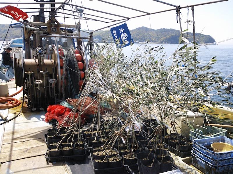 沼島海を渡る苗木201604